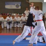 Two students demonstrate self defense movements